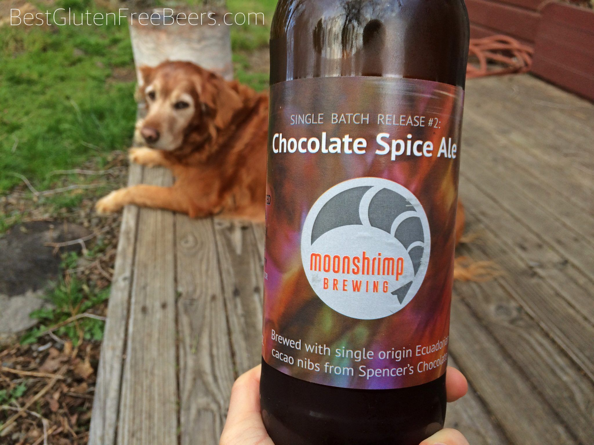 Gluten Free Beer Review Moonshrimp Brewing Chocolate Spice Ale